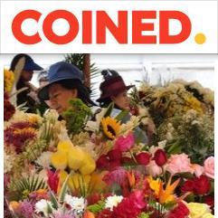 COINED, كوينكا
