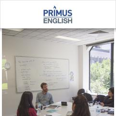 Primus English, ملبورن
