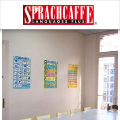 Sprachcaffe, نيس