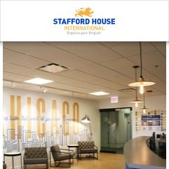 Stafford House International, شيكاغو