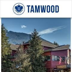 Tamwood Language Centre, ويسلر