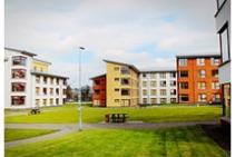 Imatge d'exemple d'aquesta categoria d'allotjament proporcionada per Babel Academy of English - 1