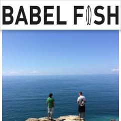 Babel Fish, Cornwall
