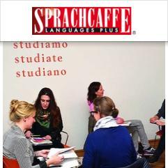 Sprachcaffe, Munic