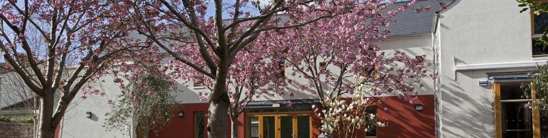 Imatge 1 de l'escola Emerald Cultural Institute