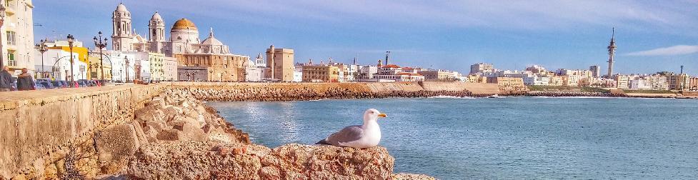 Cádiz videó indexkép