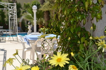 Tasiana Star - Season 4, English in Cyprus, Chypre