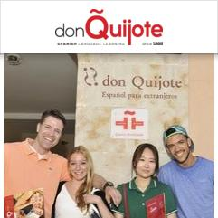 Don Quijote, Salamanque
