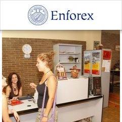 Enforex, Grenade