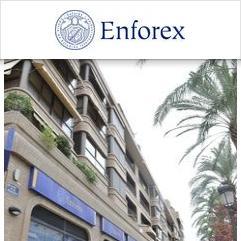 Enforex, Valence