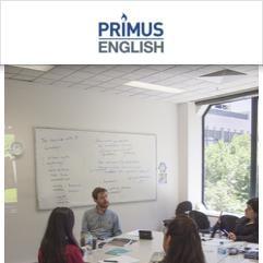 Primus English, Melbourne