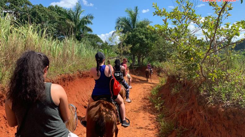 Excursions à La Havane