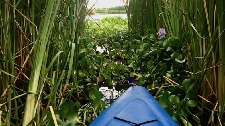 Kayak Monterrico