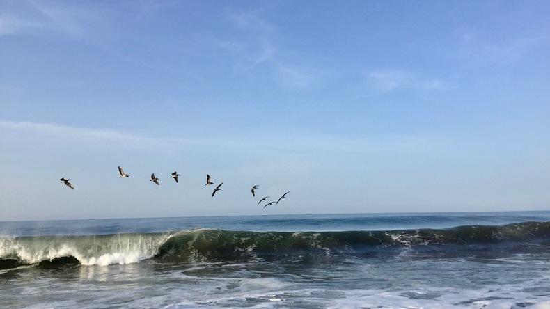 Ocean Monterrico