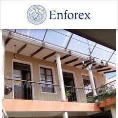 Enforex, Sucre