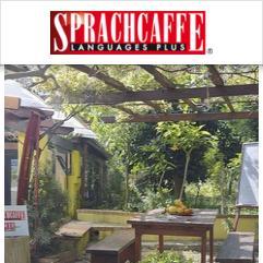 Sprachcaffe, Kalábrie