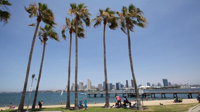 Árboles de San Diego