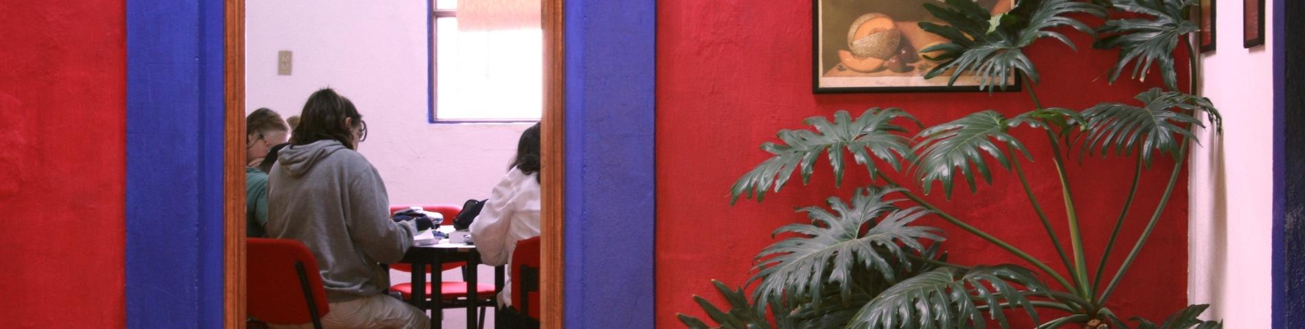 Imagen 1 de la escuela Don Quijote / Solexico Language & Cultural Centers