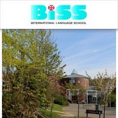 BISS, Brighton