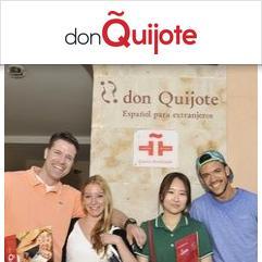 Don Quijote, Salamanca