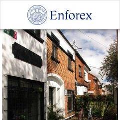 Enforex, カルタヘナ
