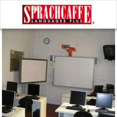 Sprachcaffe, フィレンツェ