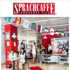 Sprachcaffe, フランクフルト