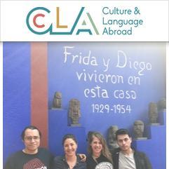 Culture and Language Abroad, Guanajuato