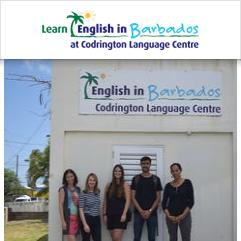 The Codrington Language Centre, Christ Church