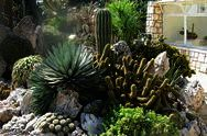 Jardín Exótico
