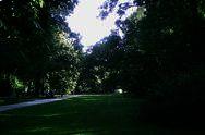 Park Lazienki