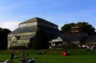 Botanické zahrady v Glasgow