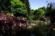 春日井庭園
