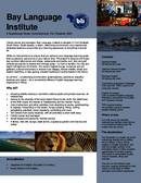 Folleto informativo del Bay Language Institute