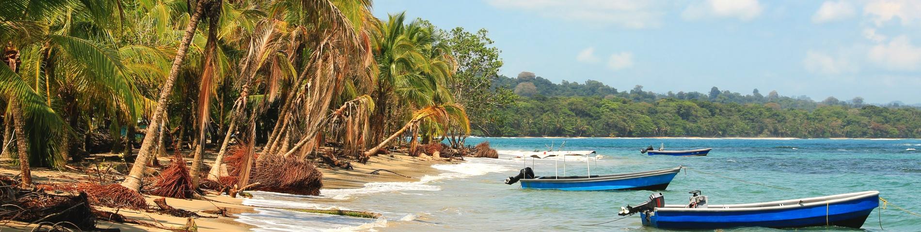 푸에르토 비에호
