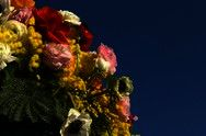 كرنفال الزهور بسان ريمو