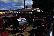 Фестиваль Cairns Show