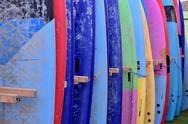 Alma Surf