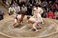Голям турнир Сумо