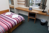 Example image of this accommodation category provided by Cork English Academy - 2