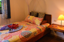 Example image of this accommodation category provided by Spanish School Pura Vida - 2