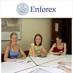 Enforex, غرناطة