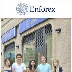 Enforex, Valencie