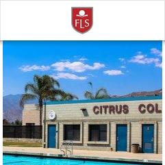 FLS Citrus College, ロサンゼルス