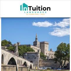 InTuition, Avignon