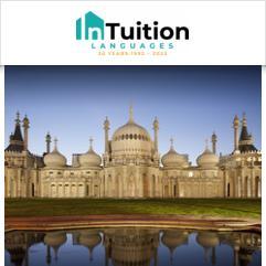 InTuition, Brighton