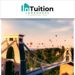InTuition, Bristol