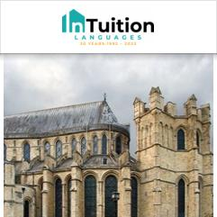 InTuition, Canterbury