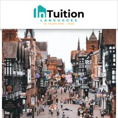 InTuition, Chester