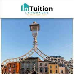InTuition, Dublin